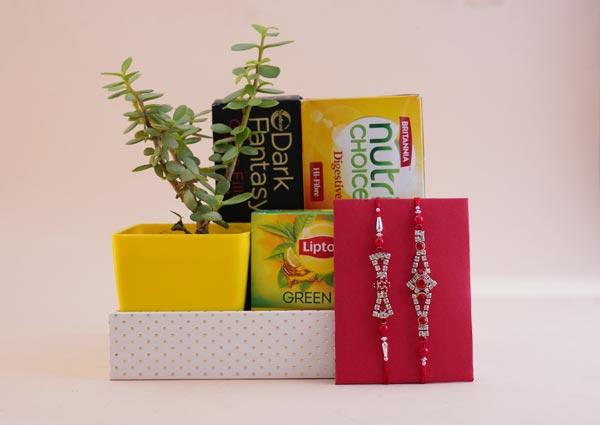 Raksha Bandhan Gifts for Brother