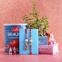Bhaiya Bhabhi Rakhi with Haldiram Gulab Jamun N Jade Plant