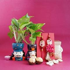 Bhaiya Bhabhi Rakhi Set with Money Plants