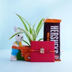 Ganesha Rakhi with Chocolate N Spider Plant