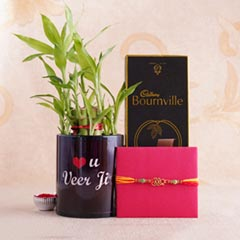 Bro Rakhi with Bournville N Lucky Bamboo Plant in Mug
