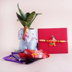 Lord Krishna Rakhi with Chocolates N Snake Plant