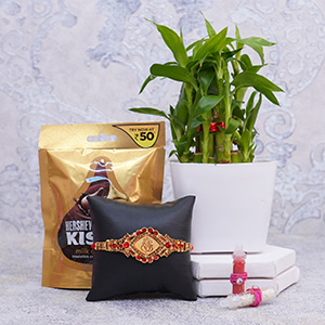 Golden Rakhi with Chocolate N Lucky Bamboo Plant