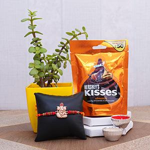 Designer Rakhi with Chocolate N Jade Plant