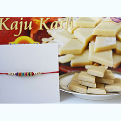 Celebrating Rakhi Happily