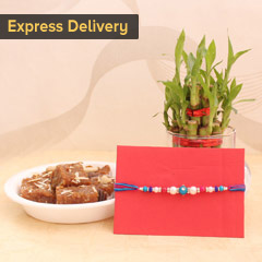 Thoughtful Rakhi combo