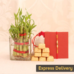 Lovely Rakhi Hamper