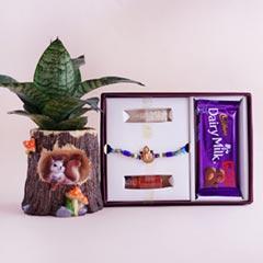 Ganesha Rakhi in Signature Box..